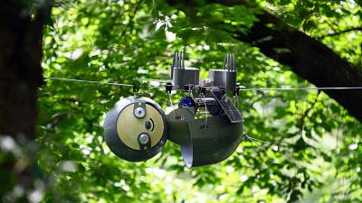 Robot sloth hangs from trees to spy on endangered animals