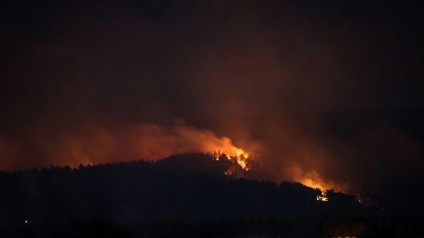 Çanakkale'nin Gelibolu ilçesinde çıkan orman yangını söndürme çalışmaları sürüyor