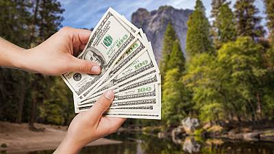 Environmental conservation pays.