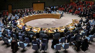 Suriye'ye sadece bir sınır kapısından insani yardımların girilmesini öngören tasarı BM Güvenlik Konseyi'nde reddedildi