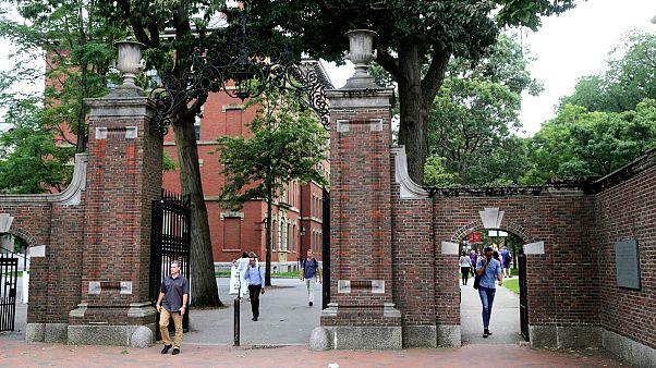 هاروارد و امآیتی به دلیل لغو ویزای دانشجویان خارجی از دولت آمریکا شکایت کردند