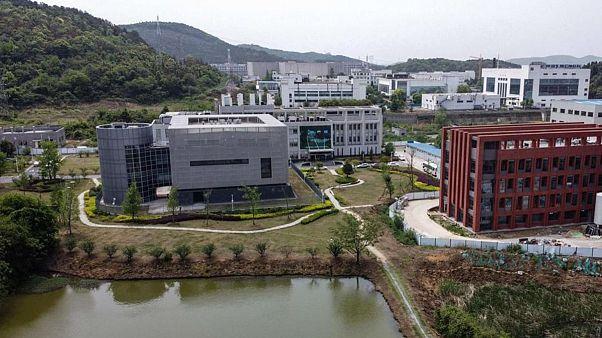 Vuhan Viroloji Enstitüsü