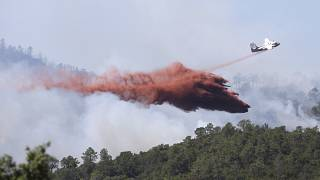 حرائق غابات تجتاح مناطق عدة من دول غرب وشمال أوروبا