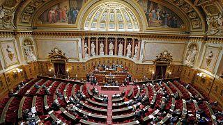 مجلس الشيوخ الفرنسي في باريس، فرنسا، الخميس 11 ديسمبر 2014