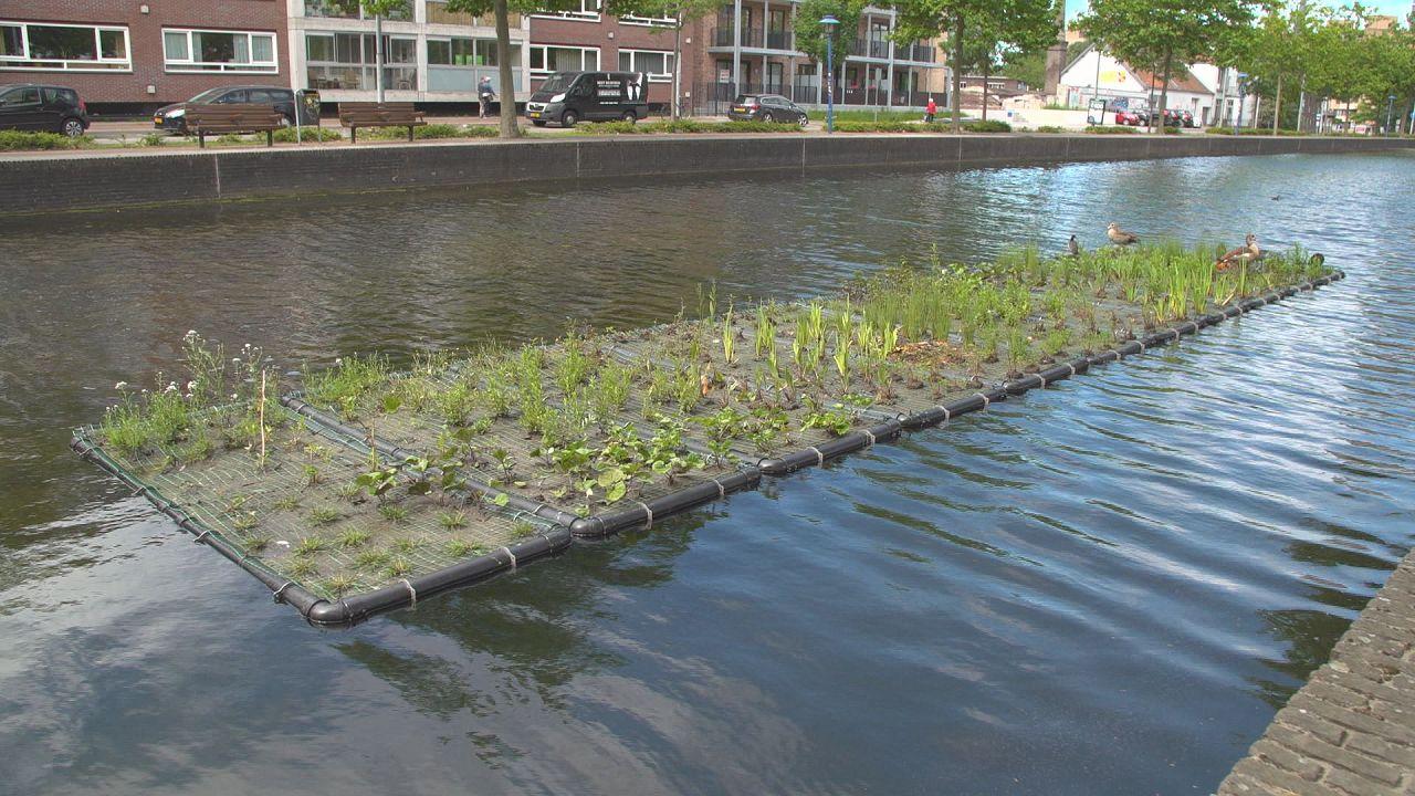 A belvárosok zöldítése olcsóbbá teszi a városüzemeltetést