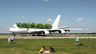 """طائرة مدنية """"خضراء"""" من مجموعة عبد القادر الجديدة"""