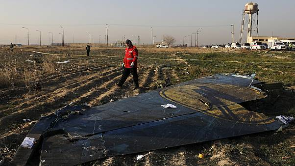 A rescue worker sifts through the wreckage of a Ukrainian plane shotdown in Tehran