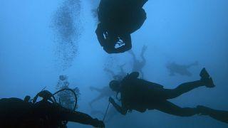 """Mergulho como """"prática segura"""" de distanciamento"""