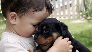 Köpekli ailede büyüyen çocuklar daha kolay sosyalleşiyor | Araştırma