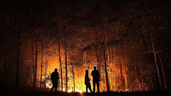 Rusya'da orman yangını / ARŞİV