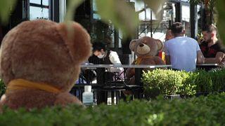 شاهد: دمى الدببة لفرض قواعد التباعد الاجتماعي في مطعم بكوسوفو
