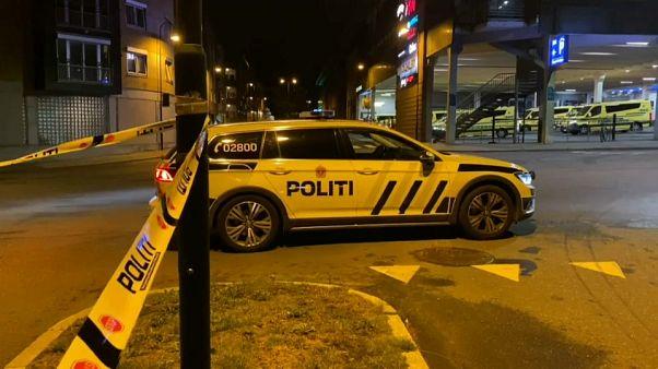 Une femme décède dans une attaque au couteau en Norvège