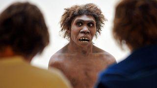 Neandertaler, Archivbild