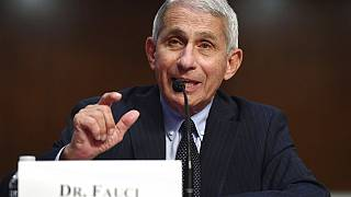 Dr Anthony Fauci, the US government's top infectious disease expert.