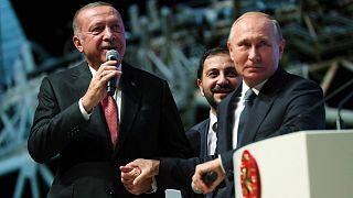 Recep Tayyip Erdogan; Vladimir Putin; Turkish Stream