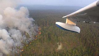 خطر آلودگی زیستمحیطی با گسترش آتش سوزی در جنگلهای سیبری افزایش یافت
