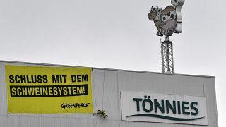"""""""Schweinesystem"""" mit 8.000 Schlachtungen: Greenpeace steigt Tönnies aufs Dach"""