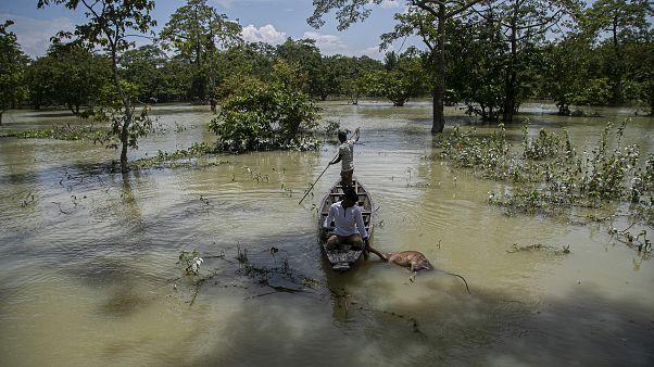 Güney Asya'da sel ve heyelanlarda ölü sayısı 221'e yükseldi