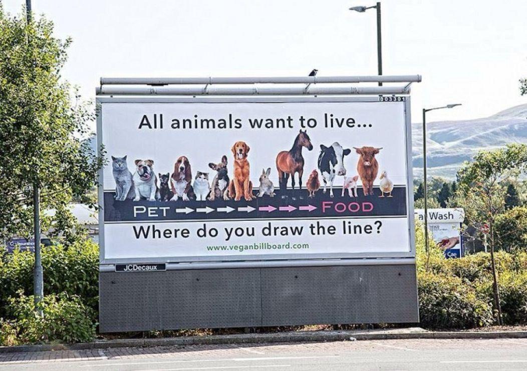 Vegan Billboard