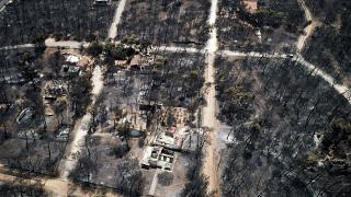 Burnt houses and trees following a wildfire in Mati, east of Athens