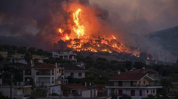شاهد.. 250 رجل إطفاء و10 مروحيات لإطفاء حريق في غابة صنوبر باليونان