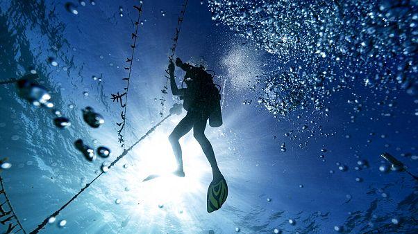 A Karib-tenger fenekén épül a világ legnagyobb vízalatti kutatóbázisa
