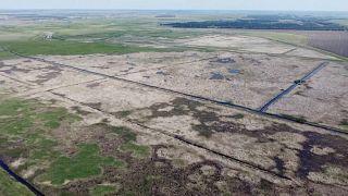 Засуха в Новосибирской области