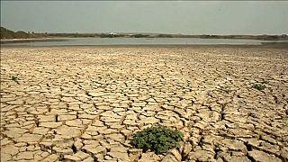 Бороться с изменением климата мешают когнитивные искажения