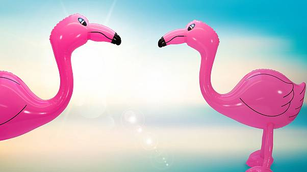 Theives in Jura were easy to indentify due to the inflatable flamingo they had purchased with a stolen credit card.