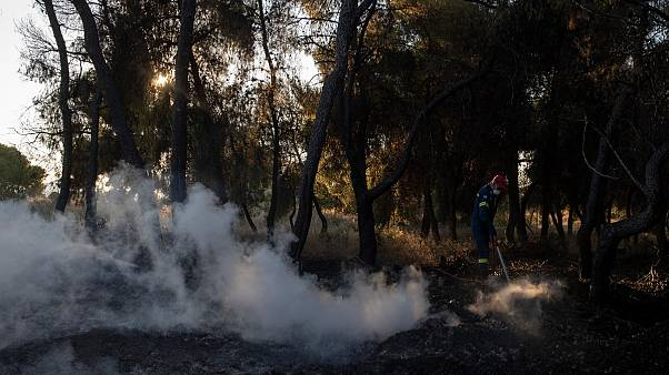 A firefighter tries to extinguish the fire near the seaside area Kechries, near Corinth, Greece,