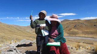 4 bin metrede uzaktan eğitim için sinyal yakalamaya çalışan Perulu öğrenci