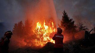 آتشسوزی در پرتغال/عکس از آرشیو