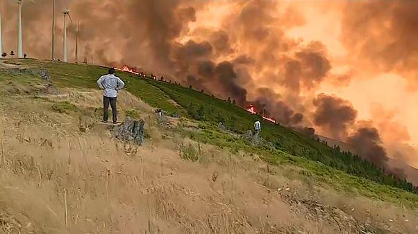 Buschfeuer in Portugal