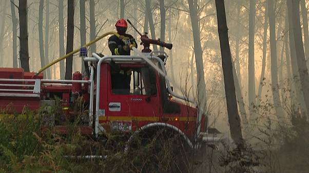 Firefighters combat forest fire in France's Gironde region