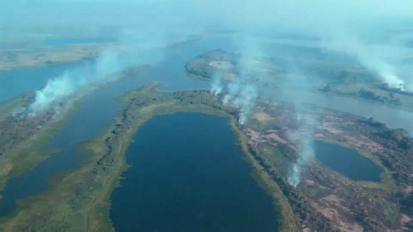 بیش از ۲ هزار مورد آتشسوزی در بزرگترین تالاب برزیل و جهان