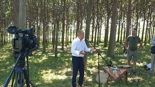 Siposhegyi