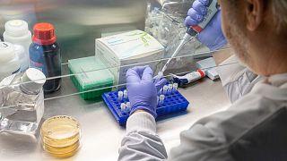 El Dr. Paul McKay trabajando en el laboratorio de Shattock.