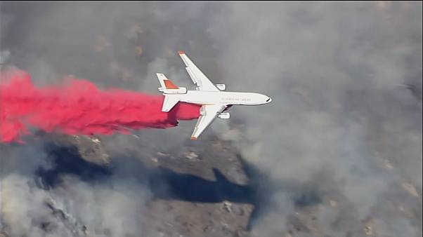 Wald brennt nahe Los Angeles