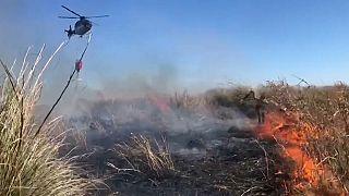 Argentinien: Brennende Feuchtgebiete
