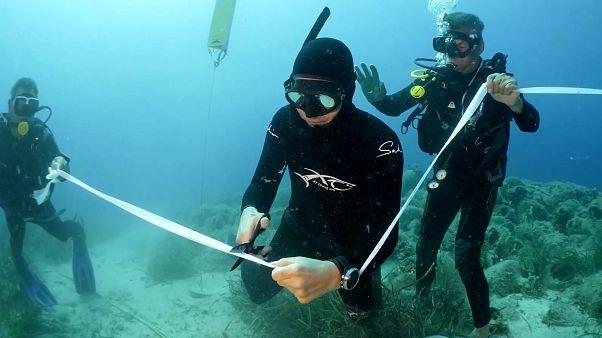 Εγκαίνια του πρώτου υποβρύχιου μουσείου