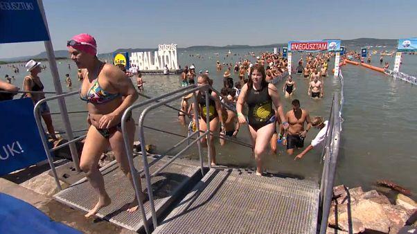 9800 Schwimmer am Balaton