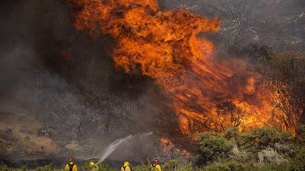Nyolcezer embert kellett evakuálni a kaliforniai bozóttűz miatt