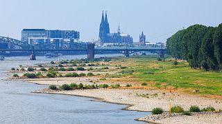 Sponda del Reno in secca a Colonia, Germania. Il Rheinauhafen con le Krahnhäuser, le case gru, e la Cattedrale sullo sfondo.