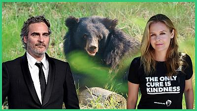 Celebrity campaign calls for us all to rethink our relationship with nature