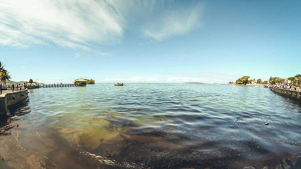 Нефтяное пятно у берегов Маврикия