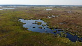 El Ártico está cambiando para siempre debido al calentamiento global