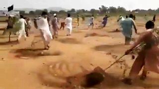 Pakistan'da fidanları söken öfkeli grup
