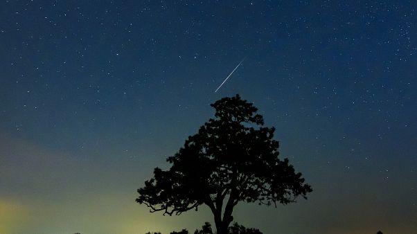 Meteor az égbolton egy fa felett Salgótarján közelében 2019. augusztus 13-ra virradóan