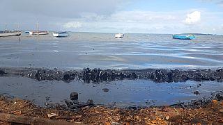 """Frachterunglück vor Mauritius: """"schlimmstes ökologisches Desaster"""""""