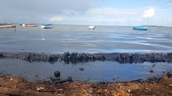 Mauritius'ta okyanusa akan petrolü temizlemek için 'saç kestirme' yarışı